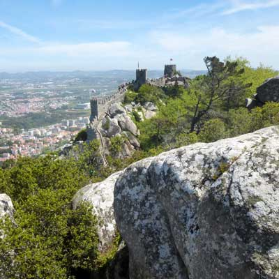Castle Moors forest Sintra